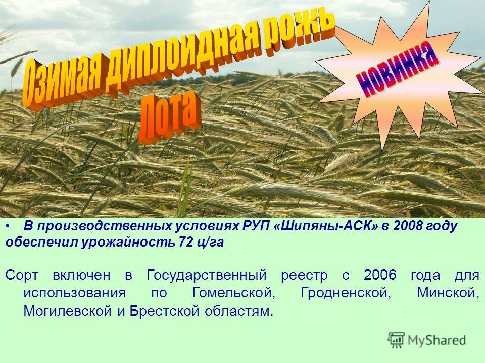 В производственных условиях РУП «Шипяны-АСК» в 2008 году обеспечил урожайность 72 ц/га Сорт включен в Государственный реестр с 2006 года для использования по Гомельской, Гродненской, Минской, Могилевской и Брестской областям.