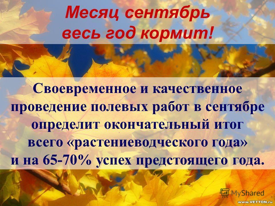 Месяц сентябрь весь год кормит! Своевременное и качественное проведение полевых работ в сентябре определит окончательный итог всего «растениеводческого года» и на 65-70% успех предстоящего года.