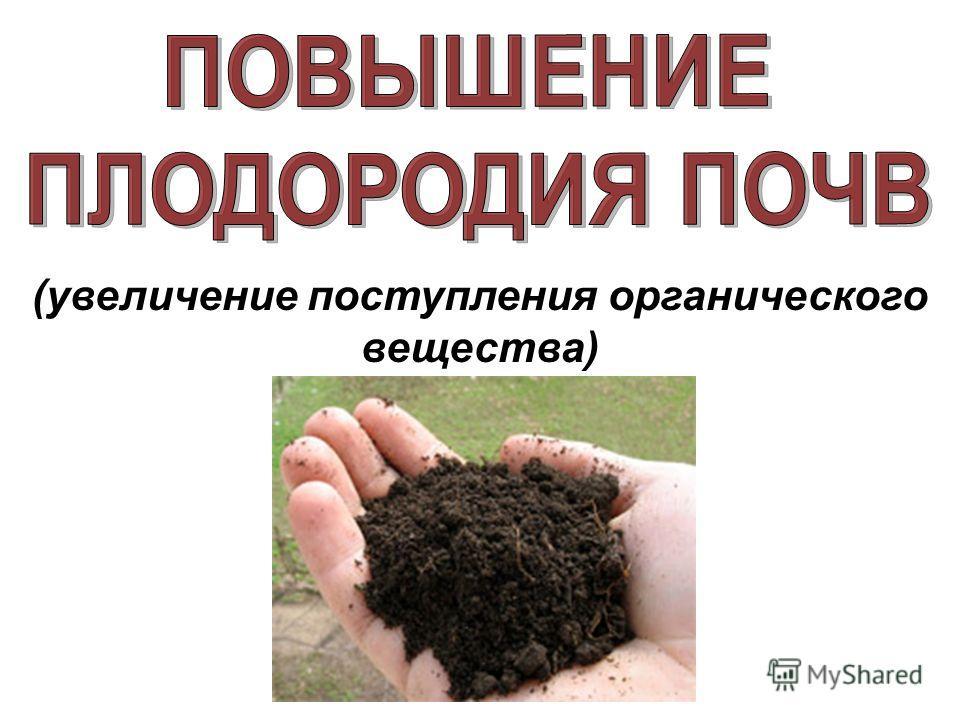 (увеличение поступления органического вещества)