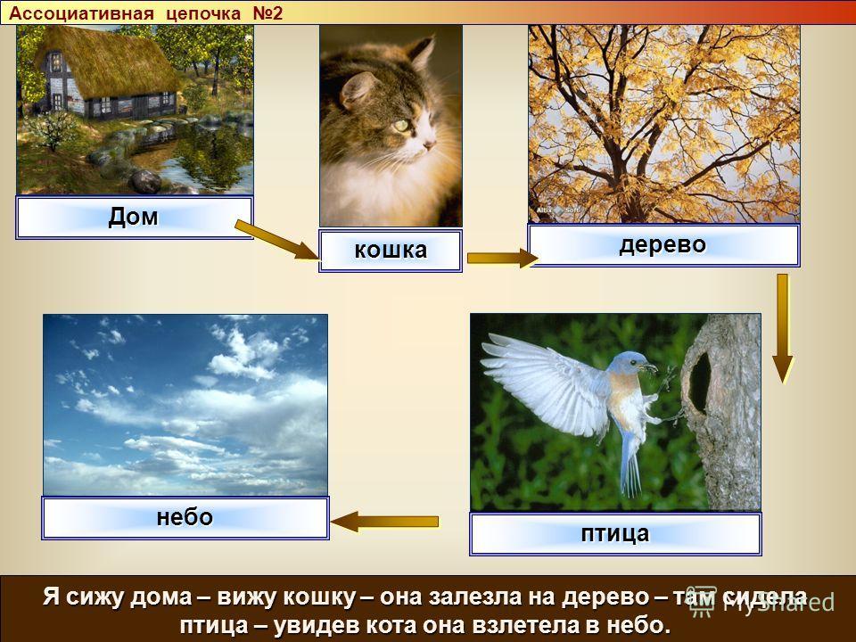 Дом кошка дерево небо Я сижу дома – вижу кошку – она залезла на дерево – там сидела птица – увидев кота она взлетела в небо. птица Ассоциативная цепочка 2