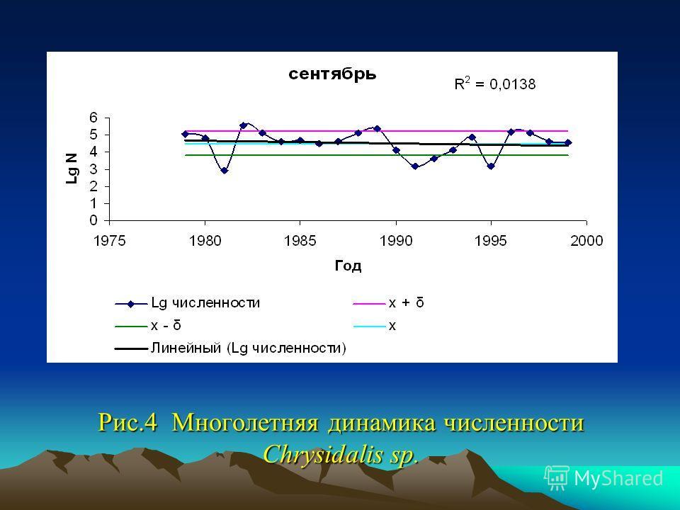Рис.4 Многолетняя динамика численности Chrysidalis sp.