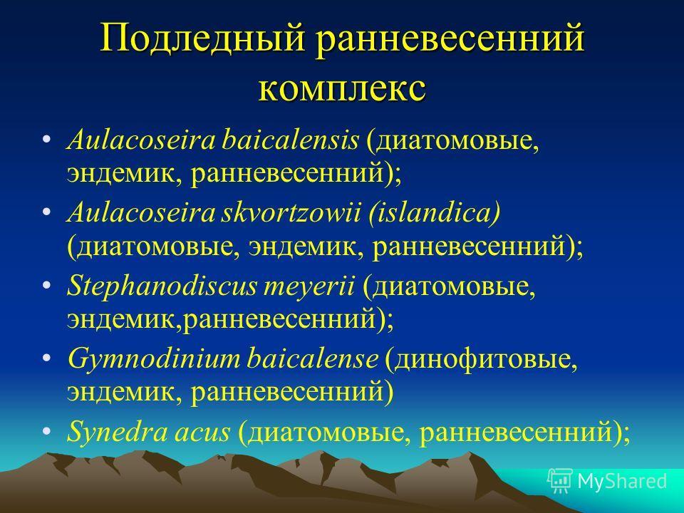 Подледный ранневесенний комплекс Aulacoseira baicalensis (диатомовые, эндемик, ранневесенний); Aulacoseira skvortzowii (islandica) (диатомовые, эндемик, ранневесенний); Stephanodiscus meyerii (диатомовые, эндемик,ранневесенний); Gymnodinium baicalens