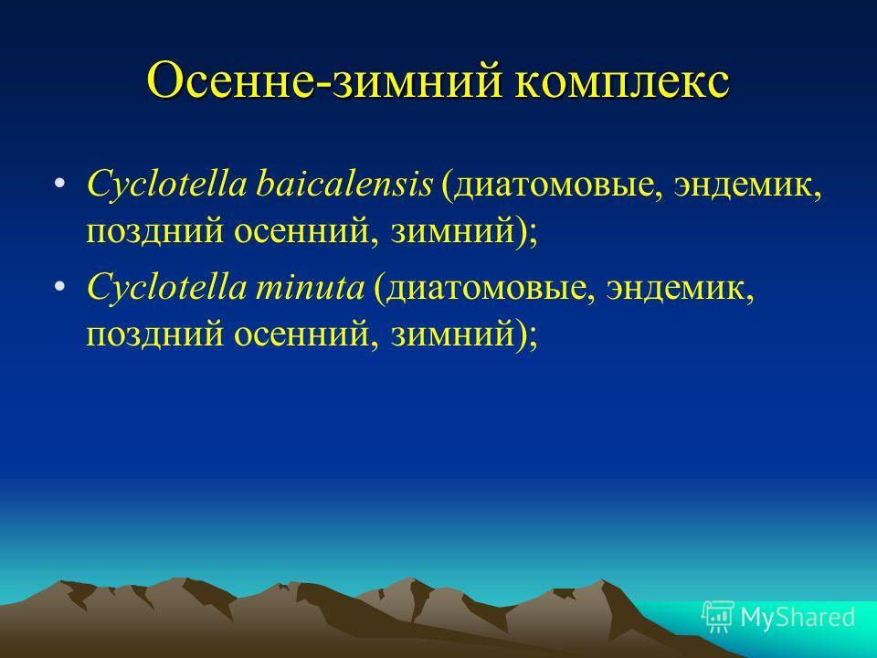 Осенне-зимний комплекс Cyclotella baicalensis (диатомовые, эндемик, поздний осенний, зимний); Cyclotella minuta (диатомовые, эндемик, поздний осенний, зимний);