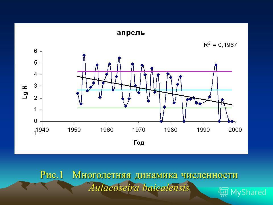 Рис.1 Многолетняя динамика численности Aulacoseira baicalensis