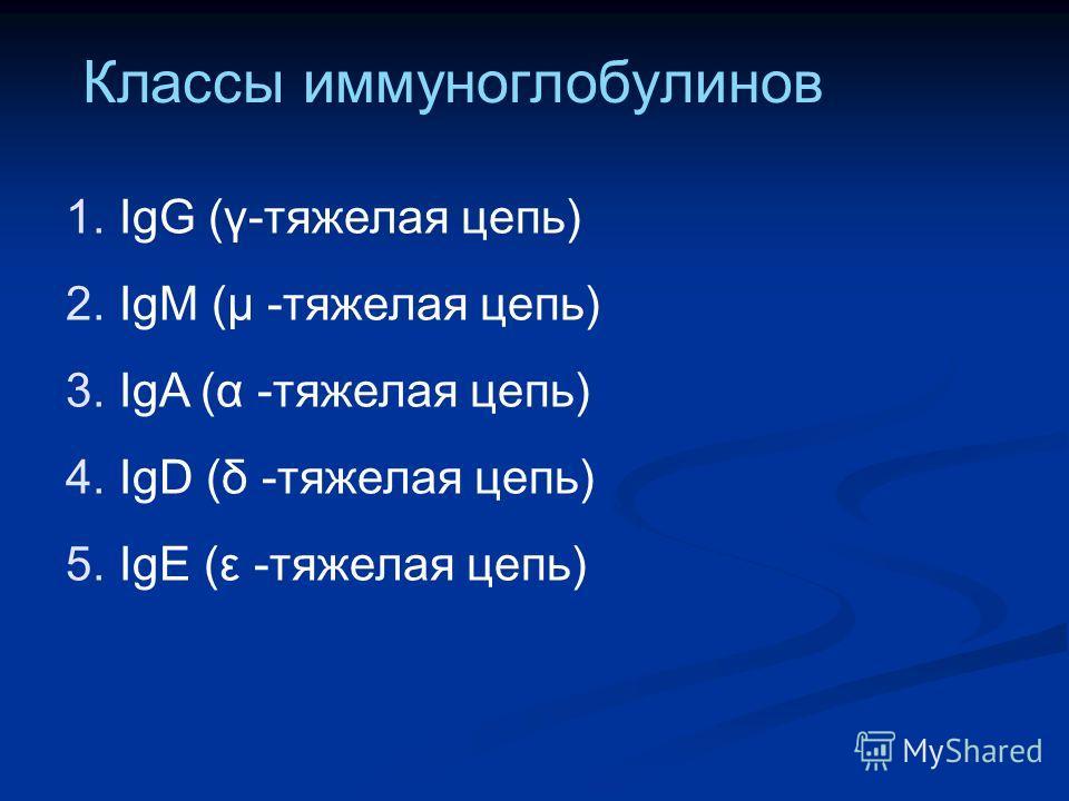 Классы иммуноглобулинов 1. IgG (γ-тяжелая цепь) 2. IgM (μ -тяжелая цепь) 3. IgA (α -тяжелая цепь) 4. IgD (δ -тяжелая цепь) 5. IgE (ε -тяжелая цепь)