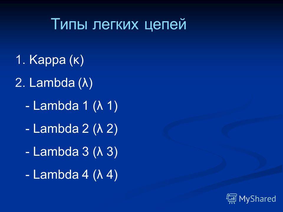 Типы легких цепей 1. Kappa (κ) 2. Lambda (λ) - Lambda 1 (λ 1) - Lambda 2 (λ 2) - Lambda 3 (λ 3) - Lambda 4 (λ 4)