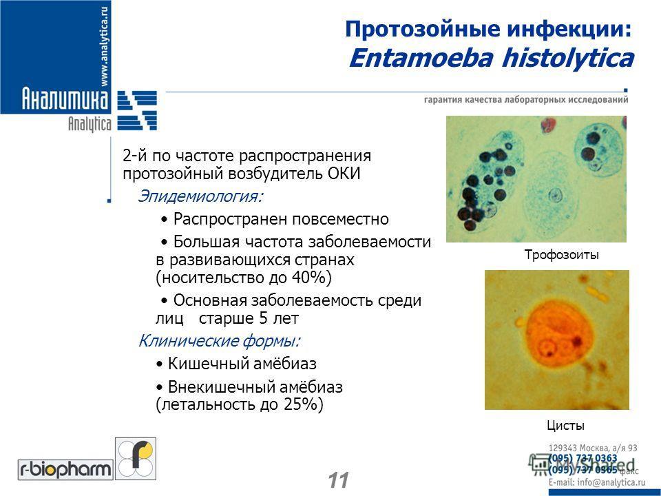 Протозойные инфекции: Entamoeba histolytica 2-й по частоте распространения протозойный возбудитель ОКИ Эпидемиология: Распространен повсеместно Большая частота заболеваемости в развивающихся странах (носительство до 40%) Основная заболеваемость среди