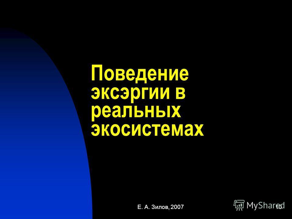 Е. А. Зилов, 200710 Поведение эксэргии в реальных экосистемах