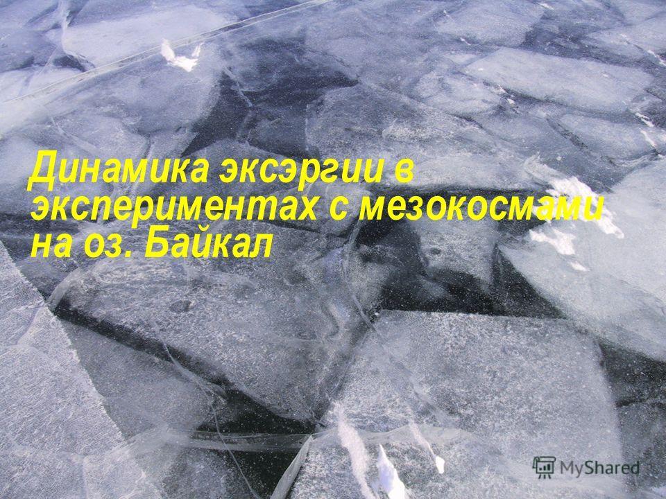 Динамика эксэргии в экспериментах с мезокосмами на оз. Байкал