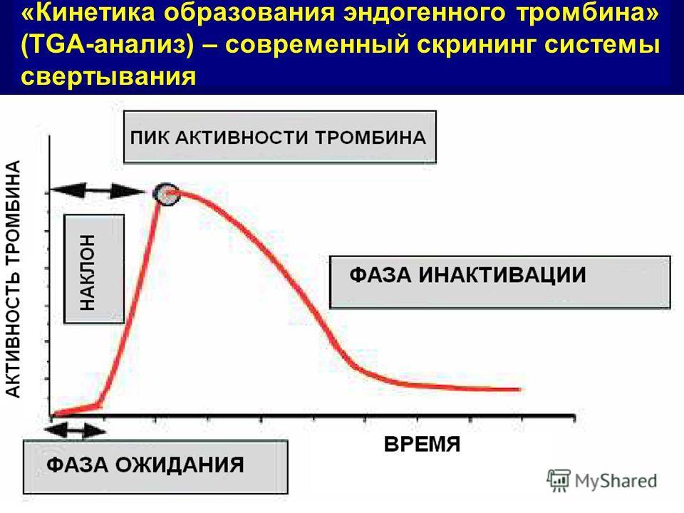 «Кинетика образования эндогенного тромбина» (TGA-анализ) – современный скрининг системы свертывания