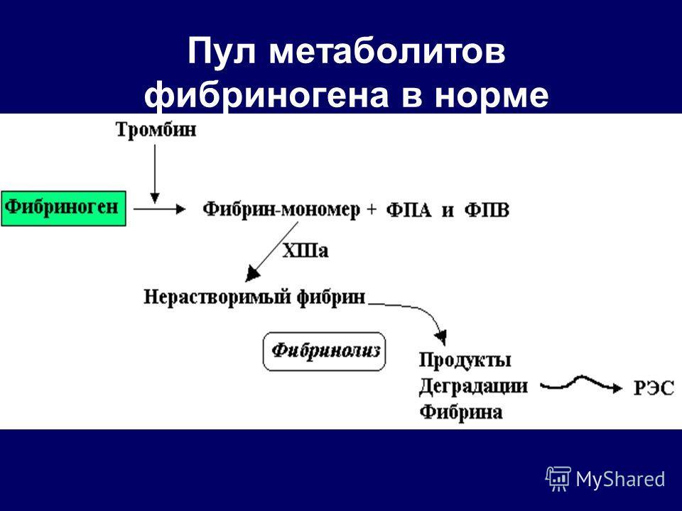 Пул метаболитов фибриногена в норме