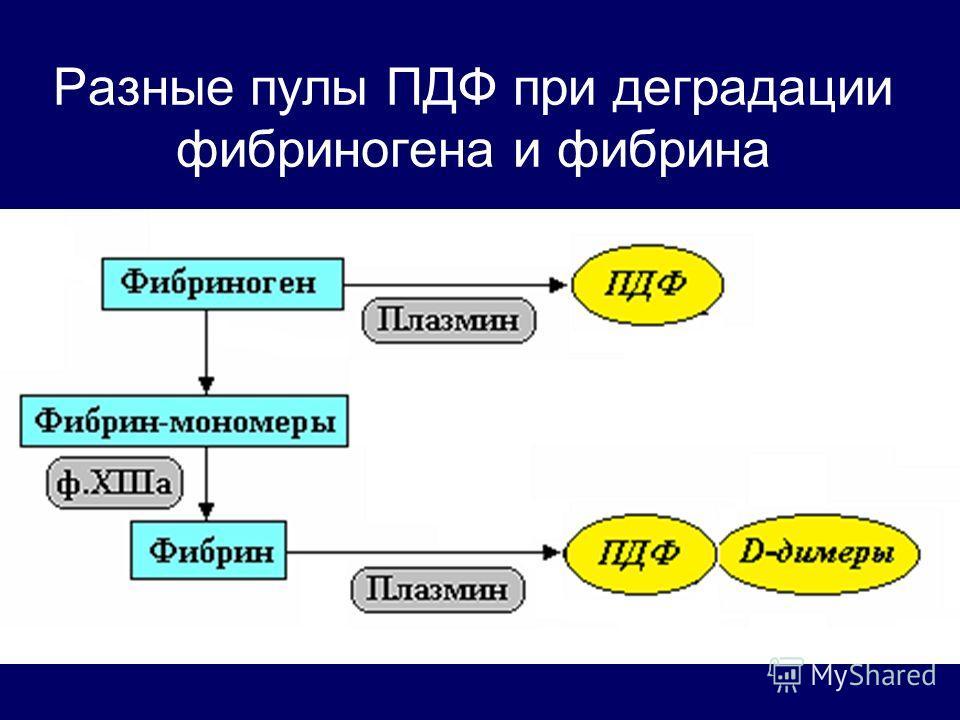 Разные пулы ПДФ при деградации фибриногена и фибрина