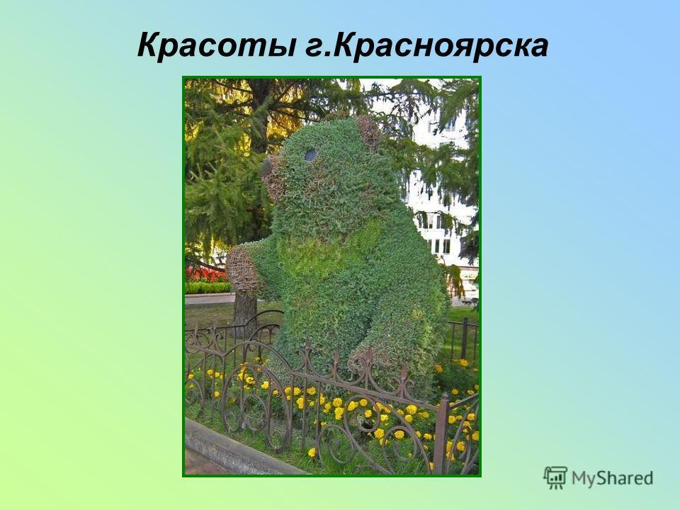 Красоты г.Красноярска