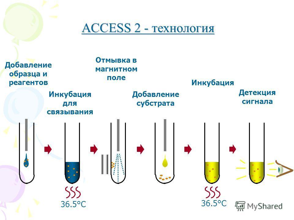 ACCESS 2 - технология Отмывка в магнитном поле Инкубация для связывания Добавление субстрата Инкубация Детекция сигнала 36.5°C Добавление образца и реагентов