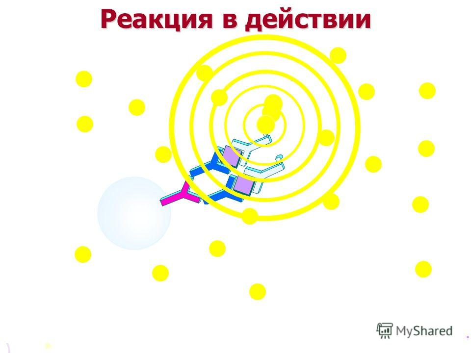 Реакция в действии Paramagnetic particles Mouse monoclonal anti-BhCG Goat anti- mouse IgG + Sample containing BhCG + Rabbit anti BhCG - alkaline phos- phatase conjugate 37 C Washing removes unbound material Substrate is addedLight is emitted
