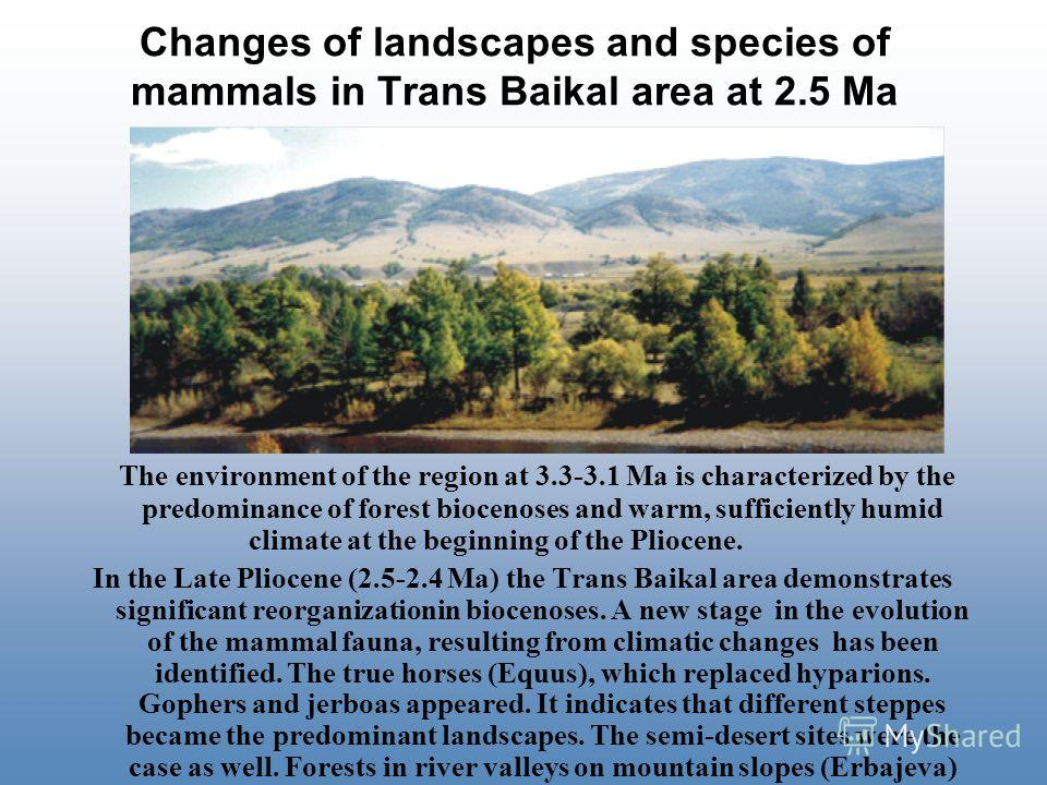 Changes of landscapes and species of mammals in Trans Baikal area at 2.5 Ma The environment of the region at 3.3-3.1 Ma is characterized by the predominance of forest biocenoses and warm, sufficiently humid climate at the beginning of the Pliocene. I