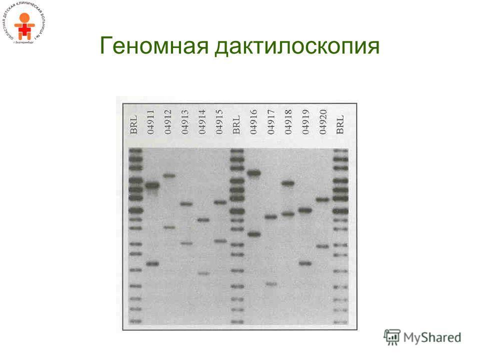 Геномная дактилоскопия