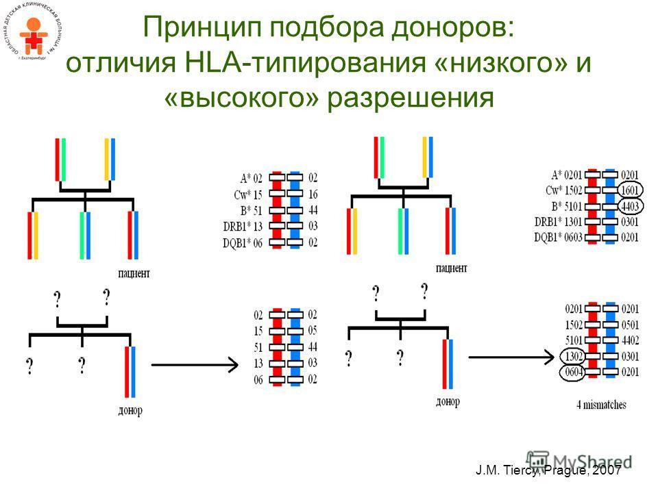 Принцип подбора доноров: отличия HLA-типирования «низкого» и «высокого» разрешения J.M. Tiercy, Prague, 2007