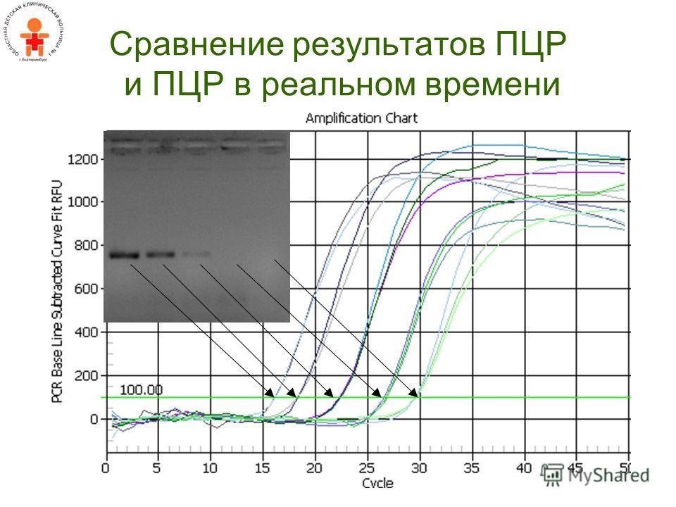 Сравнение результатов ПЦР и ПЦР в реальном времени