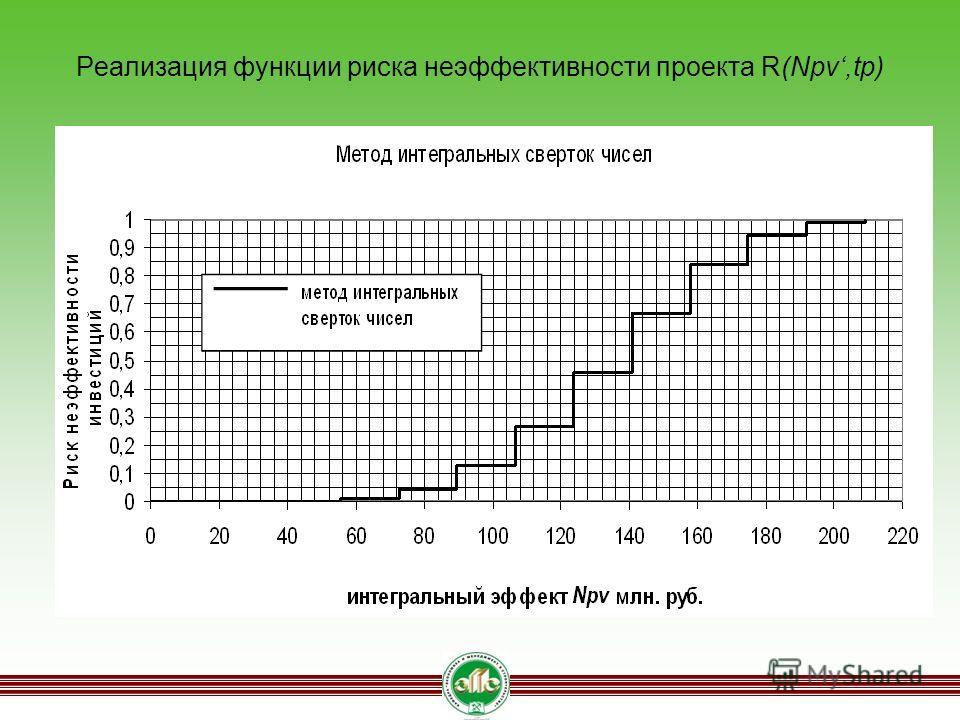 Реализация функции риска неэффективности проекта R(Npv,tp)