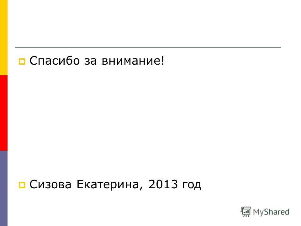 Спасибо за внимание! Сизова Екатерина, 2013 год