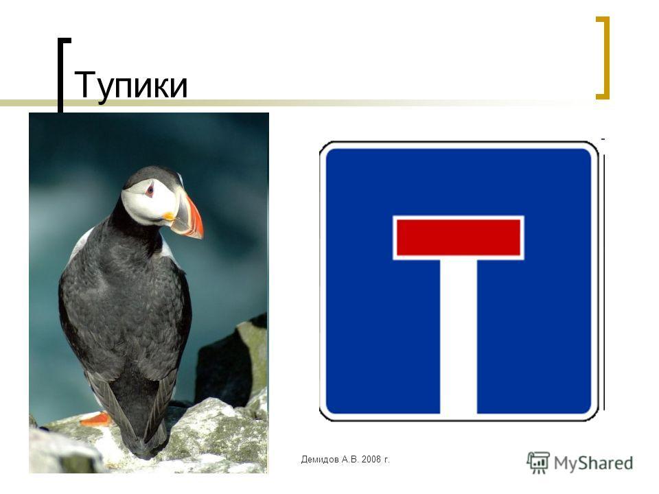 Демидов А.В. 2008 г. Тупики