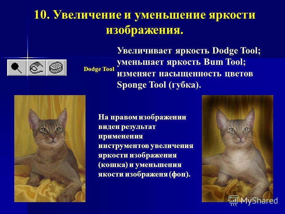 10. Увеличение и уменьшение яркости изображения. Dodge Tool На правом изображении виден результат применения инструментов увеличения яркости изображения (кошка) и уменьшения якости изображеня (фон). Увеличивает яркость Dodge Tool; уменьшает яркость B