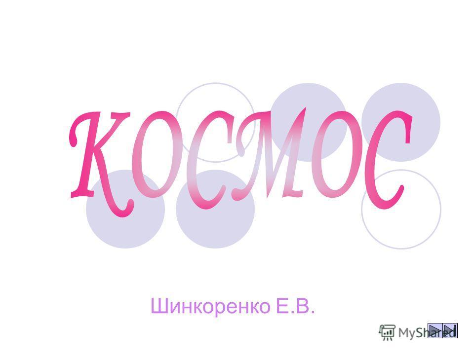 Шинкоренко Е.В.