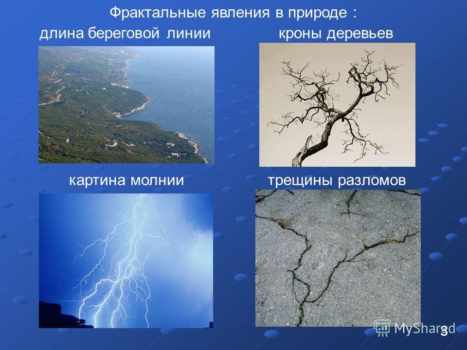 3 Фрактальные явления в природе : длина береговой линиикроны деревьев картина молниитрещины разломов
