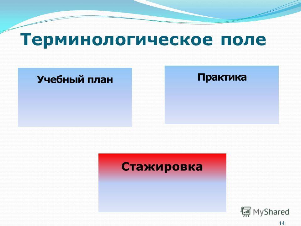 Терминологическое поле 14 Учебный план Стажировка Практика