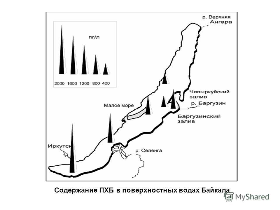 Содержание ПХБ в поверхностных водах Байкала