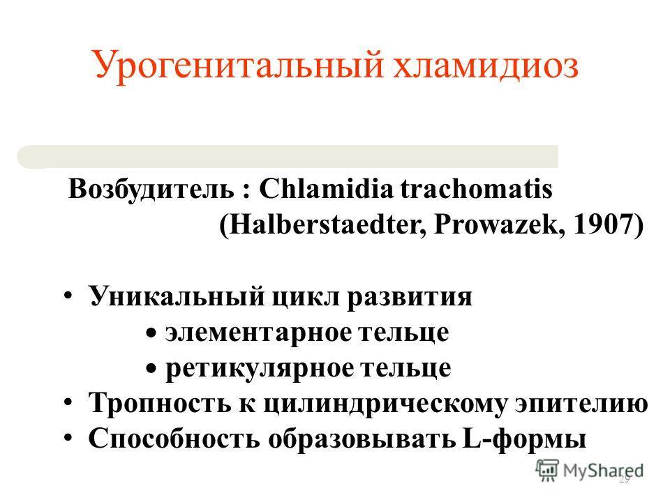 Урогенитальный хламидиоз Возбудитель : Chlamidia trachomatis (Halberstaedter, Prowazek, 1907) Уникальный цикл развития элементарное тельце ретикулярное тельце Тропность к цилиндрическому эпителию Способность образовывать L-формы 29