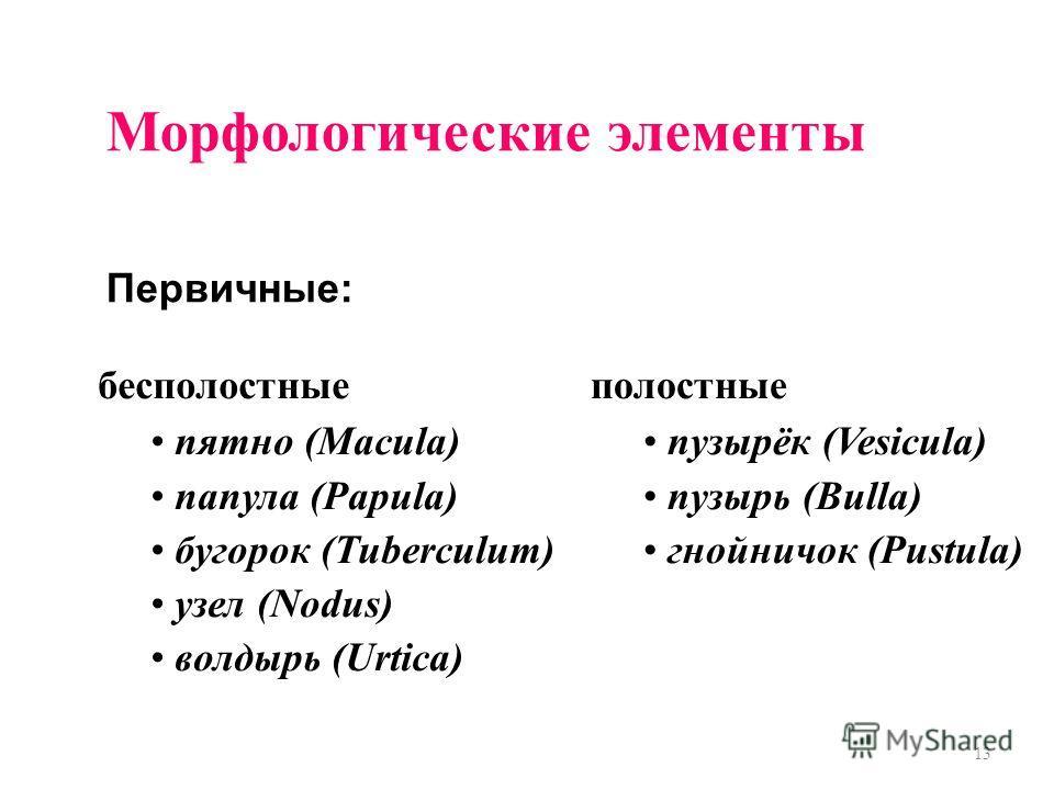 13 Морфологические элементы Первичные: полостные пузырёк (Vesicula) пузырь (Bulla) гнойничок (Pustula) бесполостные пятно (Macula) папула (Papula) бугорок (Tuberculum) узел (Nodus) волдырь (Urtica)