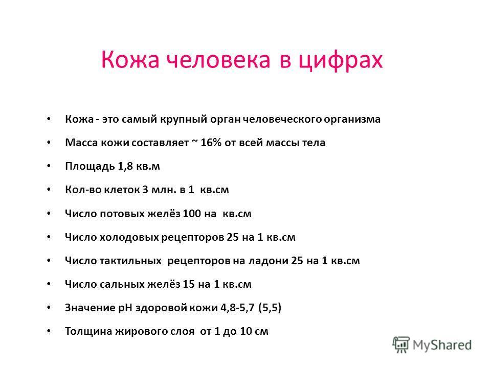 Кожа человека в цифрах Кожа - это самый крупный орган человеческого организма Масса кожи составляет ~ 16% от всей массы тела Площадь 1,8 кв.м Кол-во клеток 3 млн. в 1 кв.см Число потовых желёз 100 на кв.см Число холодовых рецепторов 25 на 1 кв.см Чис