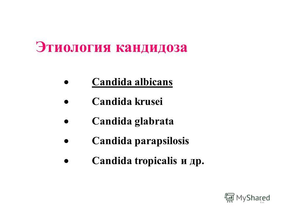 12 Этиология кандидоза Candida albicans Candida krusei Candida glabrata Candida parapsilosis Candida tropicalis и др.