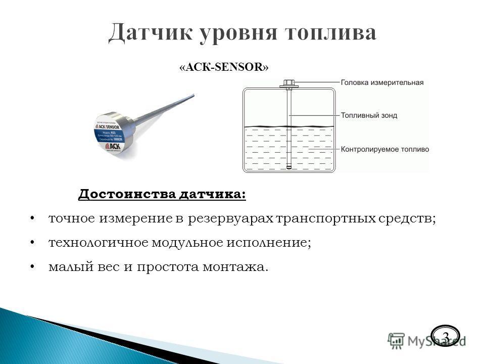 Презентация на тему Выполнил студент гр ПИ Макаров Сергей  3 3