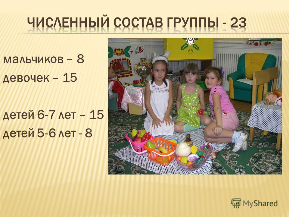 мальчиков – 8 девочек – 15 детей 6-7 лет – 15 детей 5-6 лет - 8