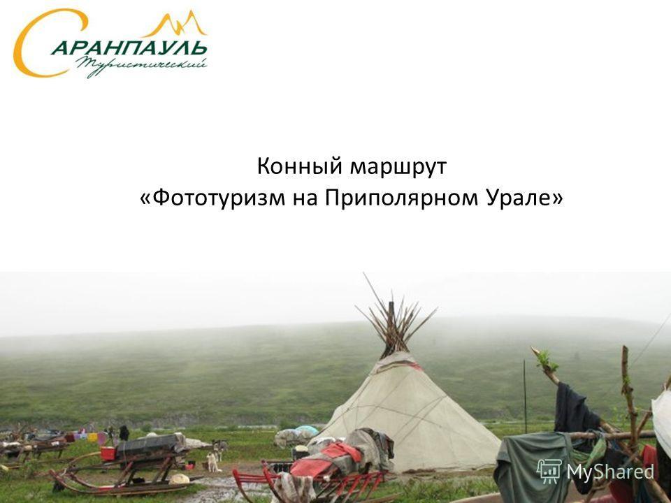 Конный маршрут «Фототуризм на Приполярном Урале»
