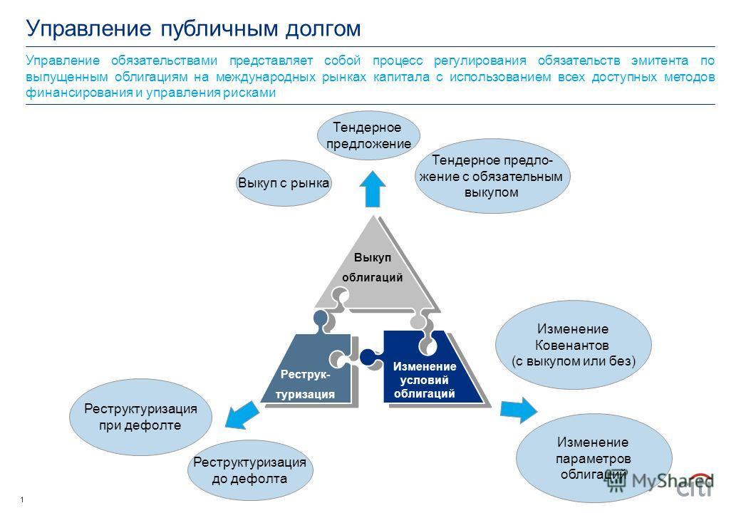 Управление публичным долгом 25 июня 2009
