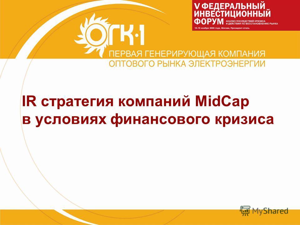 IR стратегия компаний MidCap в условиях финансового кризиса