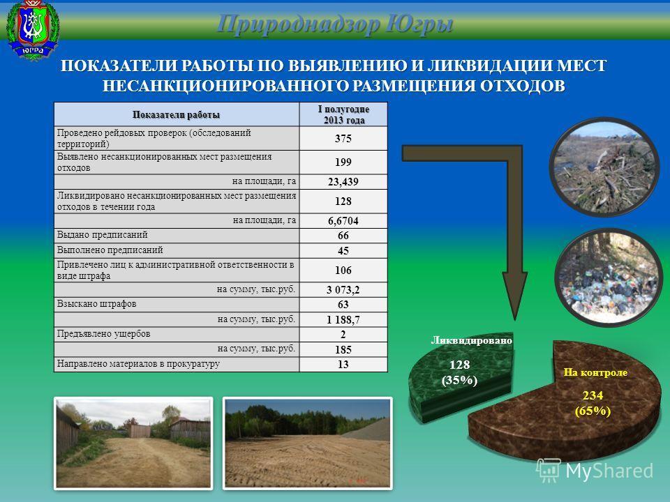 Показатели работы I полугодие 2013 года 2013 года Проведено рейдовых проверок (обследований территорий) 375 Выявлено несанкционированных мест размещения отходов 199 на площади, га 23,439 Ликвидировано несанкционированных мест размещения отходов в теч