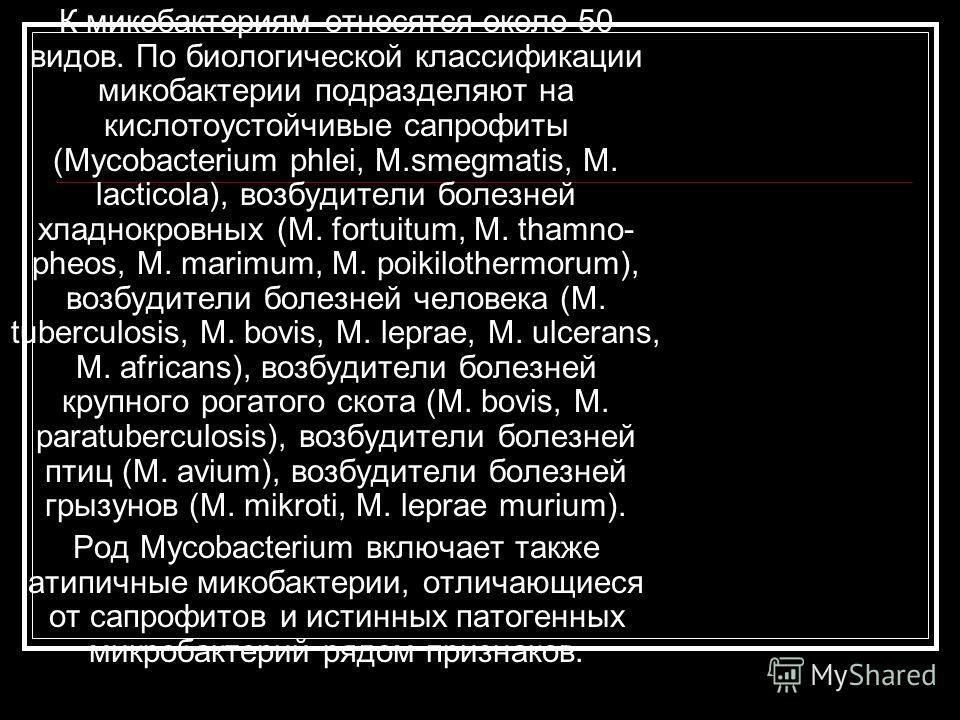 К микобактериям относятся около 50 видов. По биологической классификации микобактерии подразделяют на кислотоустойчивые сапрофиты (Mycobacterium phlei, M.smegmatis, M. lacticola), возбудители болезней хладнокровных (М. fortuitum, M. thamno- pheos, M