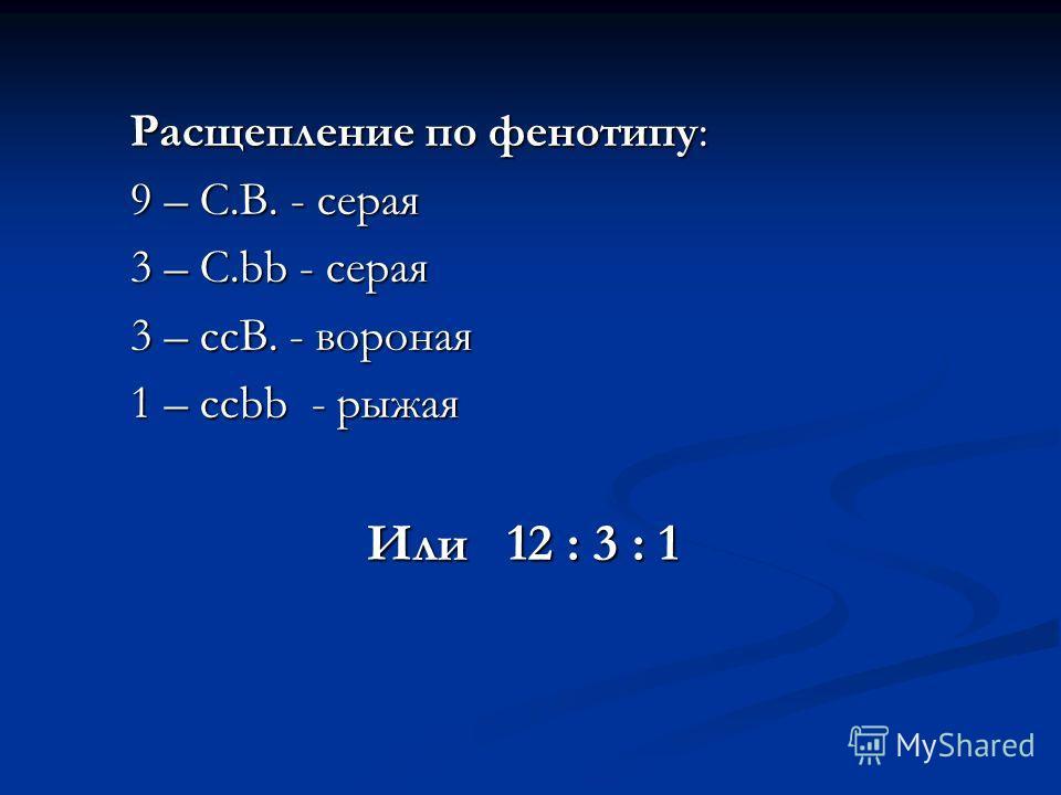 Расщепление по фенотипу: 9 – C.B. - серая 3 – C.bb - серая 3 – ccB. - вороная 1 – ccbb - рыжая Или 12 : 3 : 1