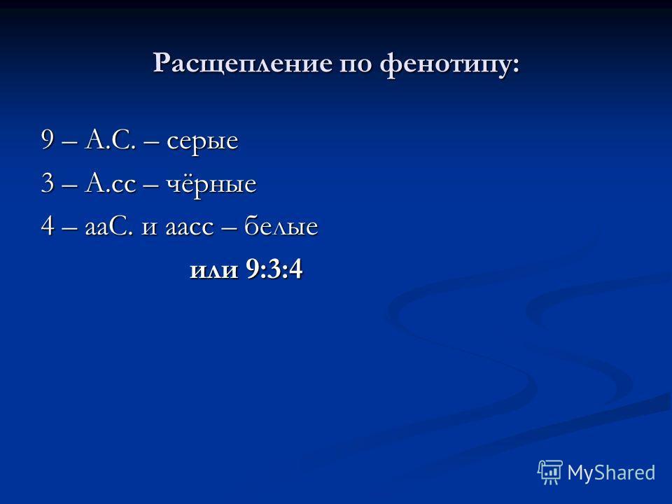 Расщепление по фенотипу: 9 – А.С. – серые 3 – А.сс – чёрные 4 – ааС. и аасс – белые или 9:3:4 или 9:3:4