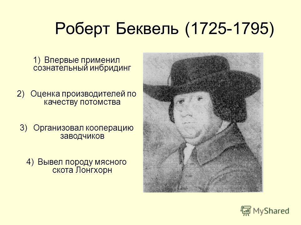 Роберт Беквель (1725-1795) Роберт Беквель (1725-1795) 1)Впервые применил сознательный инбридинг 2) Оценка производителей по качеству потомства 3) Организовал кооперацию заводчиков 4)Вывел породу мясного скота Лонгхорн