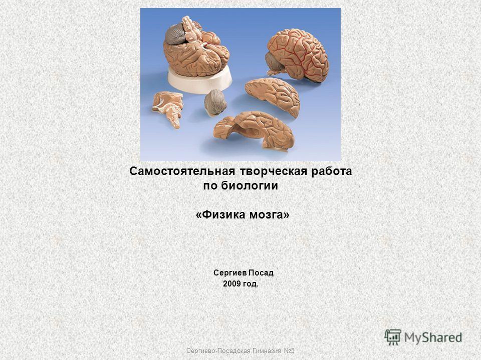 Самостоятельная творческая работа по биологии «Физика мозга» Сергиев Посад 2009 год. Сергиево-Посадская Гимназия 5