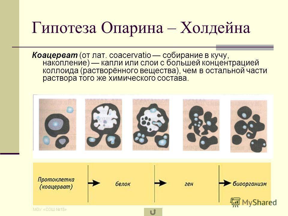 МОУ Гипотеза Опарина - Холдейна