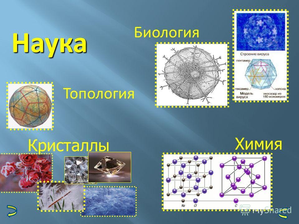 Наука Биология Топология Кристаллы Химия
