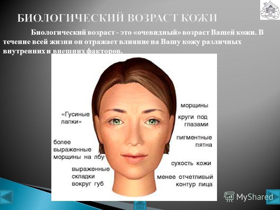 Нормальная кожа на ощупь гладкая, мягкая, эластичная, поры у неё небольшие и почти невидимые, кожа имеет ровный цвет и здоровый блеск. Такая кожа содержит достаточное количество кожного сала и влаги. Обновление клеток происходит регулярно. Кожа выгля
