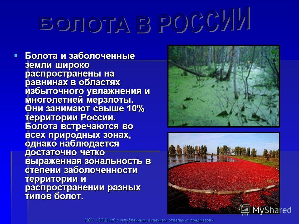 МОУ МОУ Болота и заболоченные земли широко распространены на равнинах в областях избыточного увлажнения и многолетней мерзлоты. Они занимают свыше 10% территории России. Болота встречаются во всех природных зонах, однако наблюдается достаточно четко
